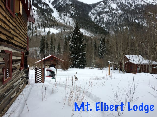 Prospector Cabin at Mt Elbert Lodge - Twin Lakes - Cabaña