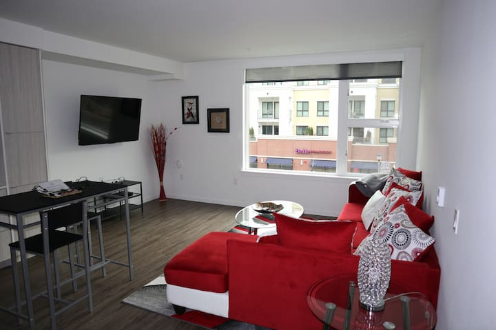 Lovely Bellevue Condo + Rooftop, near Bars & Mall