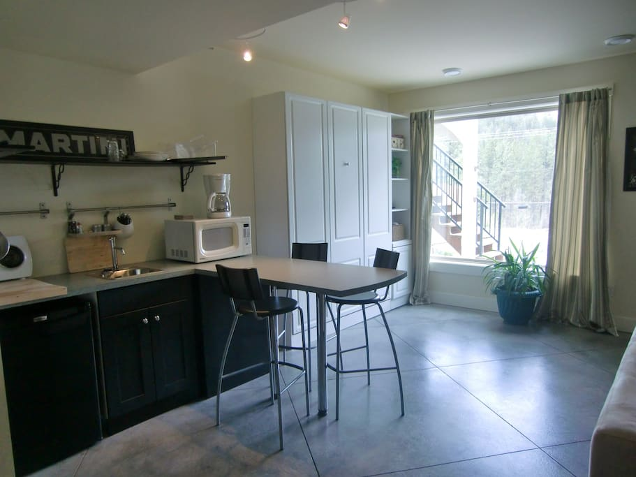 Bright, walk out lower level with views of the park. Kitchenette w/ cooktop, micro and 2 mini fridges