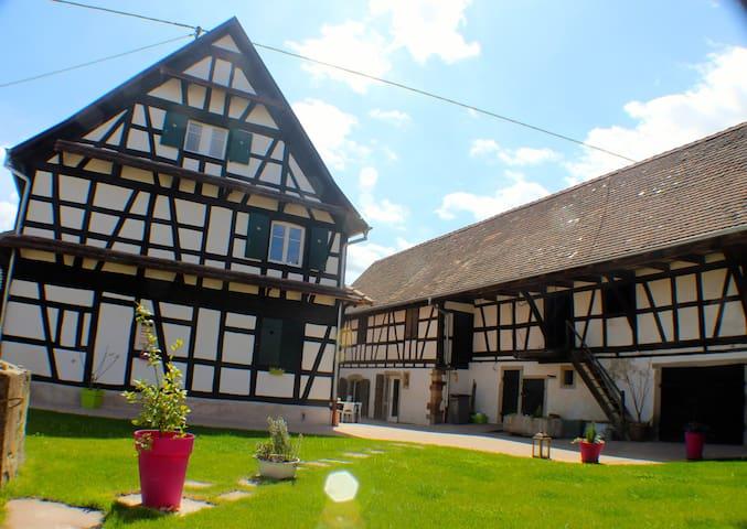 Appartement pour 9 personnes - Limersheim - Apartmen
