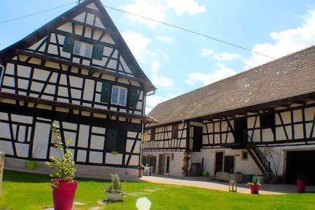 Appartement pour 9 personnes - Limersheim - Huoneisto