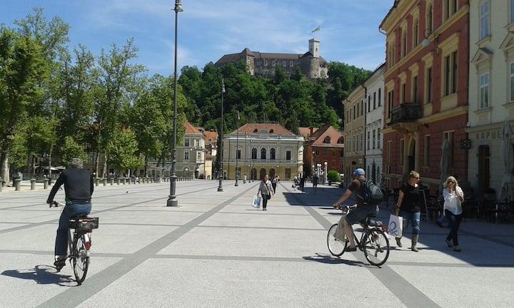 Easy Living in Ljubljana  Center+Free parking