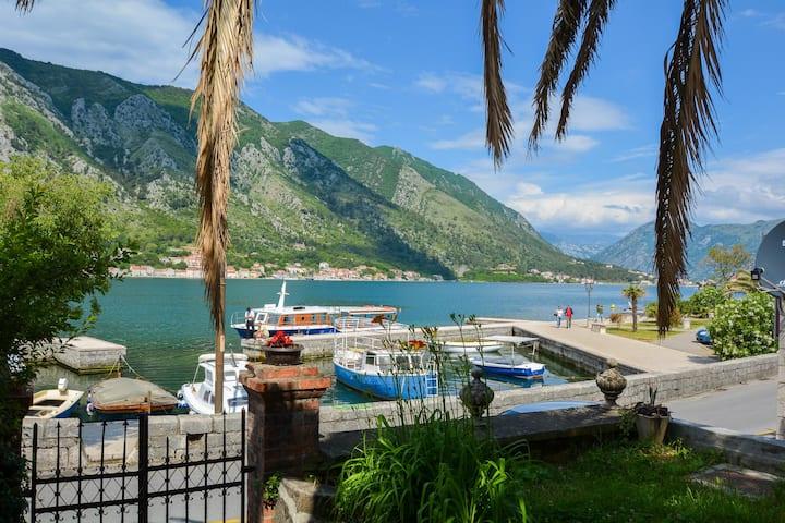 Garden seafront studio in Kotor