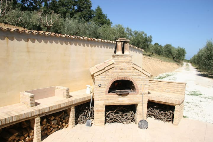 Wood-fired pizza oven :)