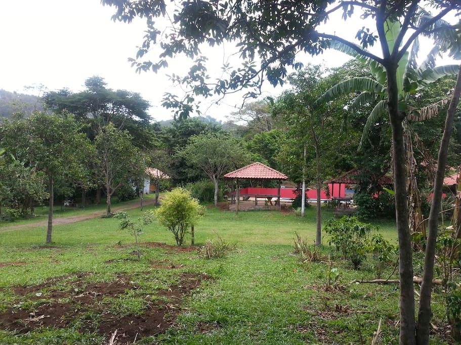 Vista panorámica alrededor del bungalow.