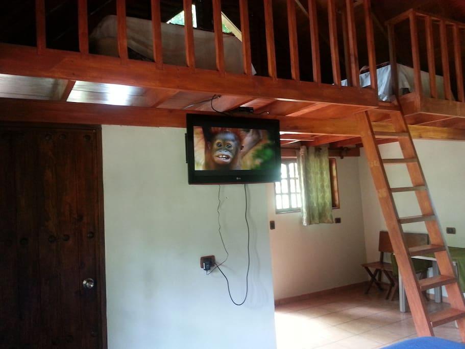 Vista al interior del bungalow