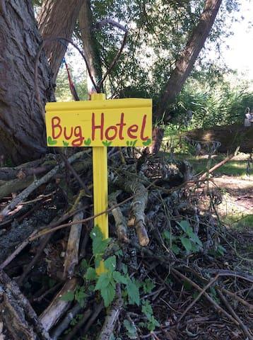 Bug hotel!