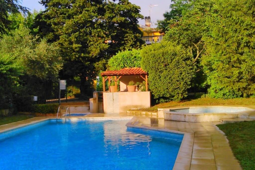 au fond du jardin : la piscine