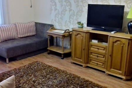 Квартира-Люкс в элитном центре города