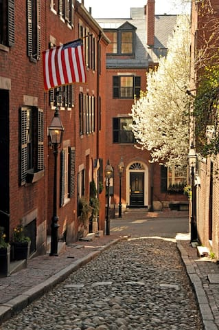 Beacon Hill Two Beds, Walk to Everything - Boston - Apto. en complejo residencial