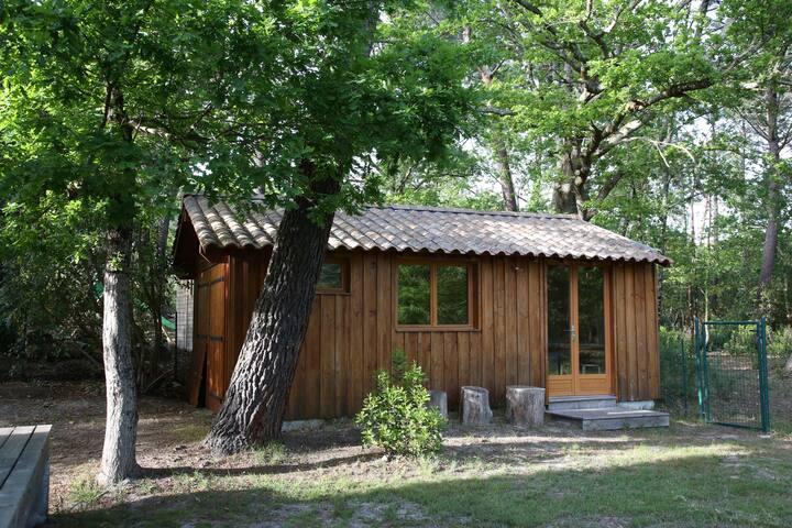 Studio Cabanon dans un parc arboré - Lège-Cap-Ferret - Cabaña