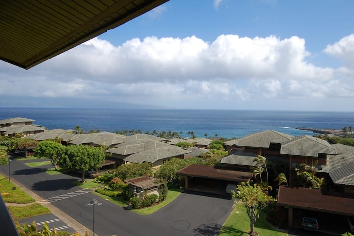 Endless Ocean Views! Gold! - Kapalua
