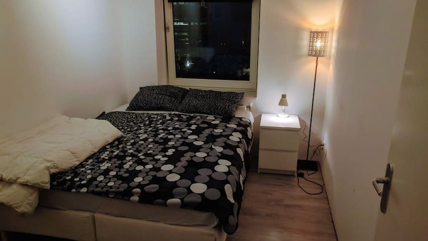 Private Room in lovely apartment,15 mnts to center