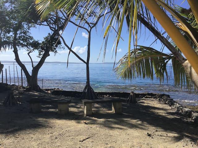 Oceanfront Oasis - Sola Sollew