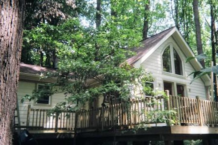 Pacem Cottage - Charlottesville - Guesthouse