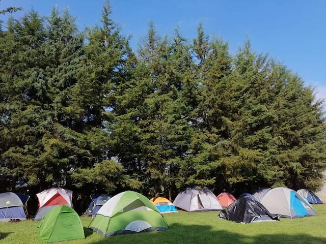 Campamento Los Fresnos, Pátzcuaro, Michoacán.