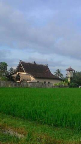 UBUD Traditional Indonesian Antique Limasan Sunset