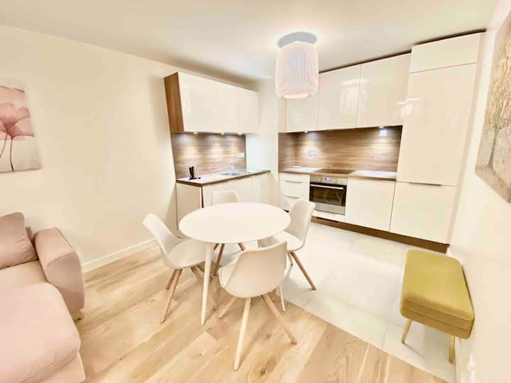 Great apart new Chablais Parc 10 min Geneva centre
