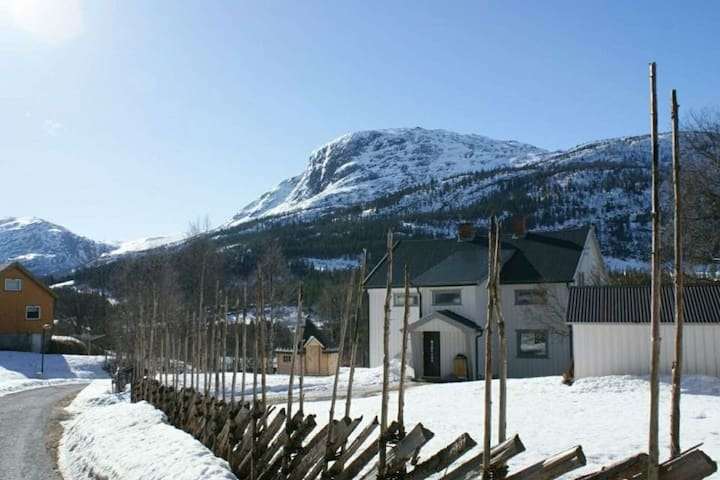 Former smallholding in Hemsedal - Hemsedal - House