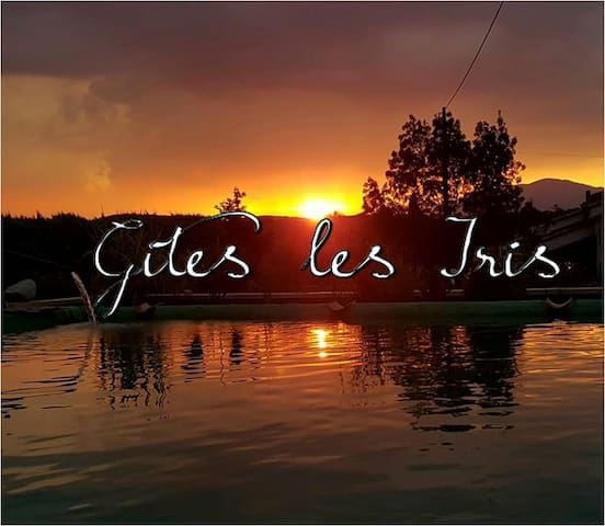 Gîte Ardèche sud avec bassin naturel 9.5x7.5