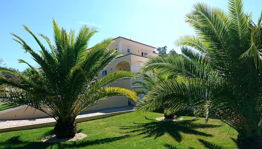 Spacious and charming villa with swimming pool - Loulé - Villa