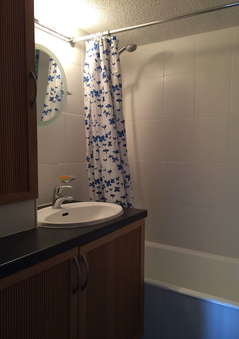 Bathroom with good shower and basin.  There is a separate loo.