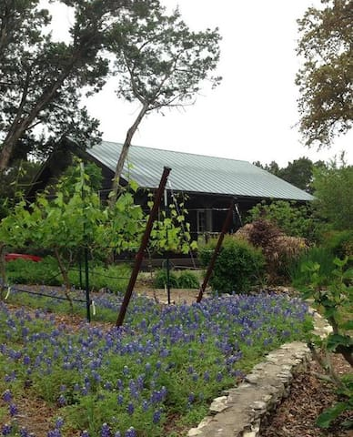Grey Forest Vineyard Cabin - Views & Charm - Helotes - Houten huisje