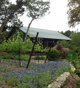 Vineyard Cabin w/Pool - Helotes
