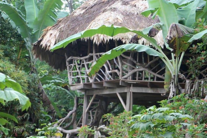 Bribri Lodge, two-story uslê (uslê de dos pisos)