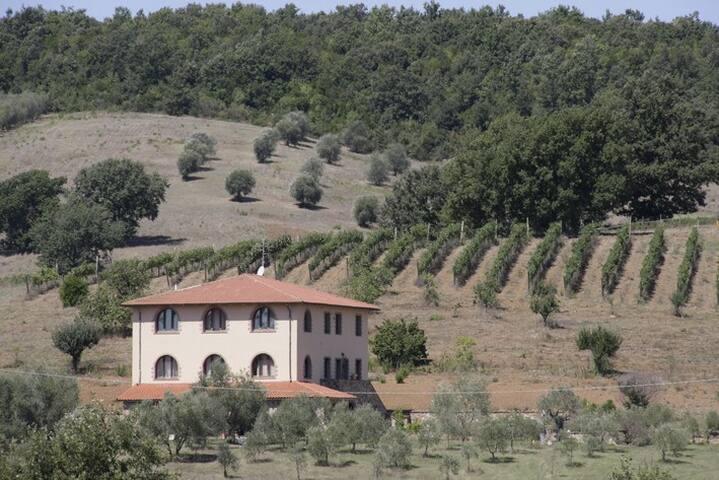 Azienda agricola La Steccaia Alta - Civitella Paganico - Wohnung