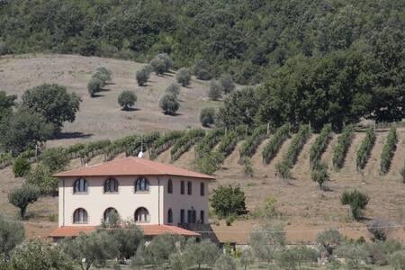 Azienda agricola La Steccaia Alta - Civitella Paganico - อพาร์ทเมนท์