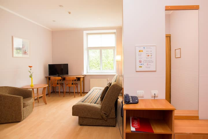 Central Apartment 43