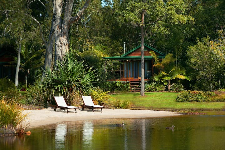 Lake Weyba Cottage Noosa  Spring has Sprung,