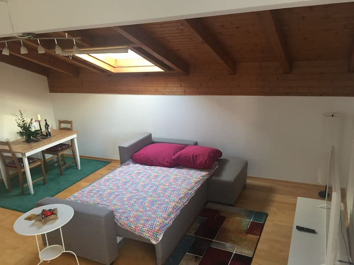 Room with Sofabed 25mins from City Centre