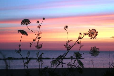 Relax'n Willoughby - Beachfront on Chesapeake Bay