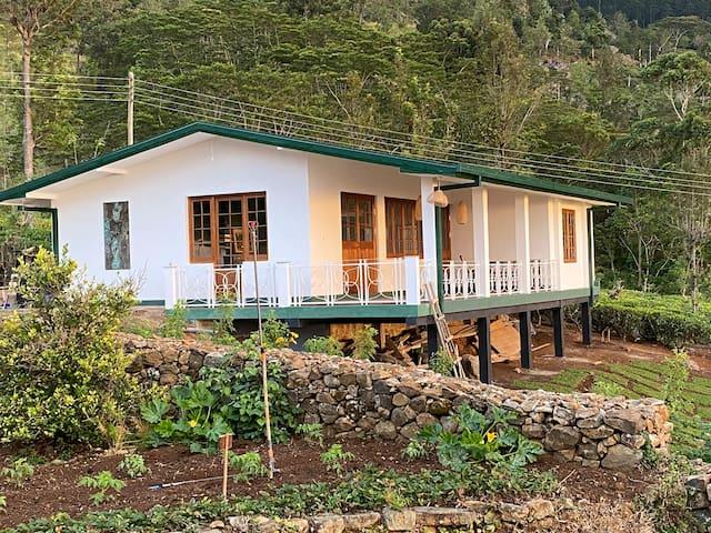 Full board private annex on 50 acre tea estate