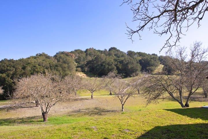 Narnia Farm in Peachy Canyon - Paso Robles - Rumah