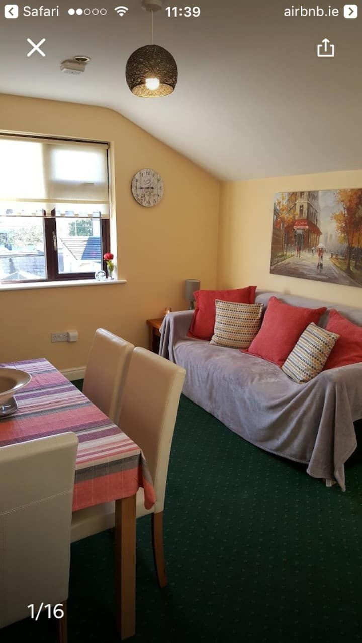 Edward's Air Bnb Townhouse Galway City Cosy Apt