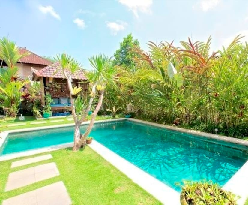 Pool and landscaped gardens