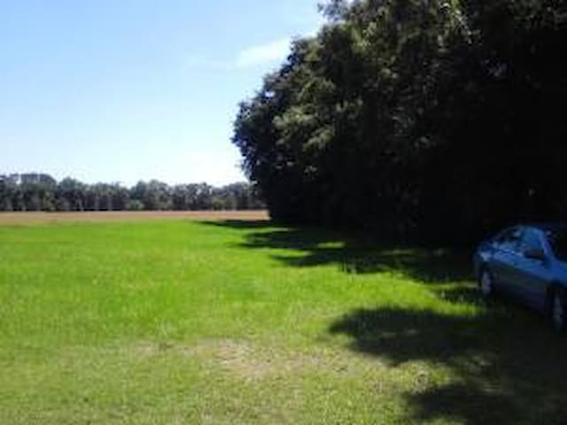 Countryside View and Private 3/2 - Alachua - Dom