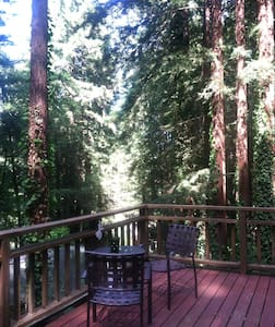 Redwoods, river and wine country