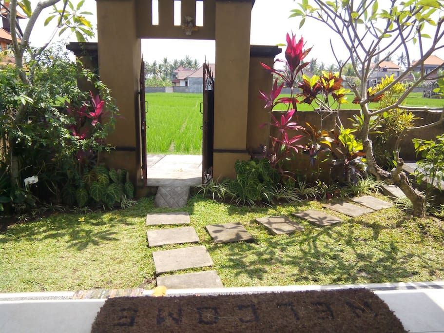 Back garden and rice fields