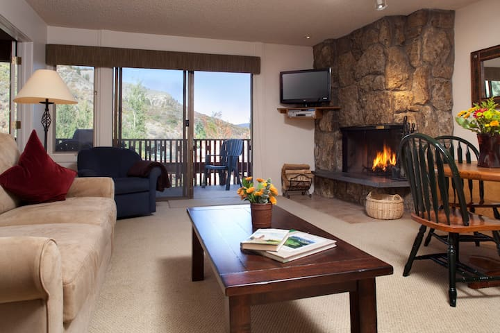 Cozy Ski-In/Ski-Out Condo! Pool & hot tub access!
