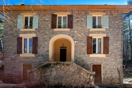 Chambres d'hôte, forêt de Vizzavona - Vivario