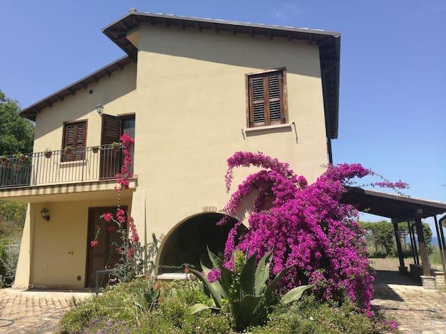 Villa a Pineto, Torre del Cerrano