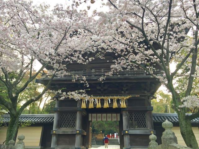 10min to Hakata St. 41mins to Fukuoka AP, Sakura - Higashi-ku, Fukuoka-shi - Dům