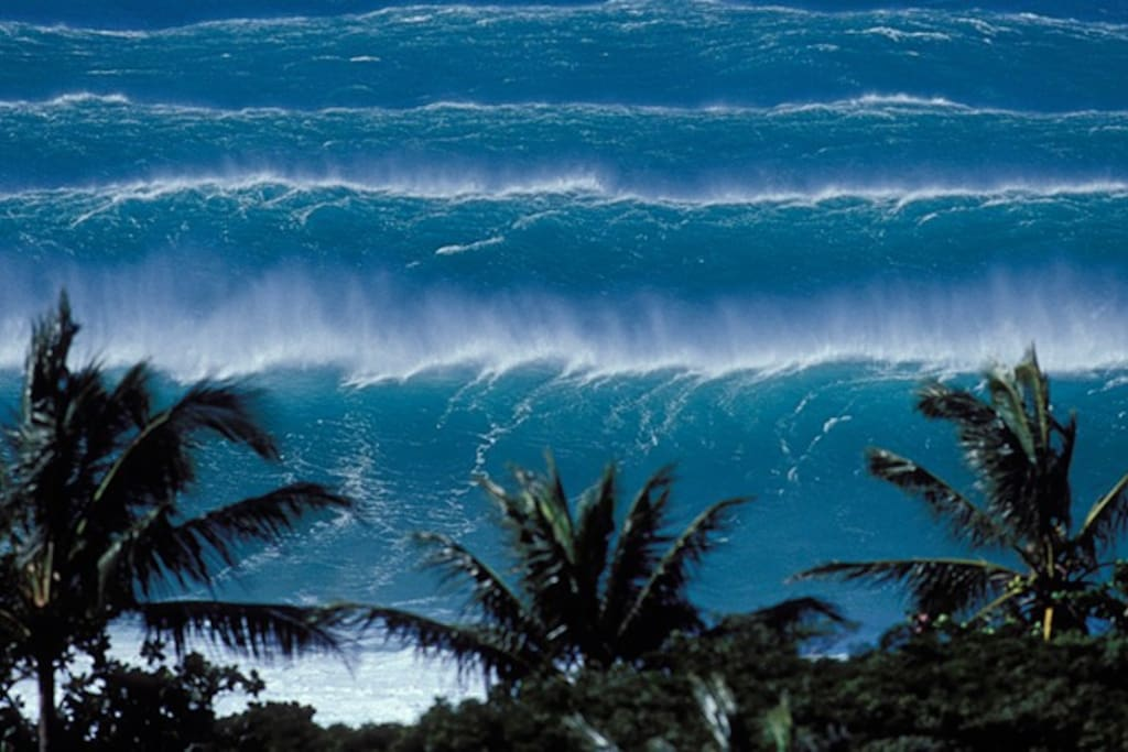 Maybe you'll get to see, hear and feel the monsters...one of the most beautiful and humbling natural wonders on Earth.  When the waves get this big, the whole house shakes.