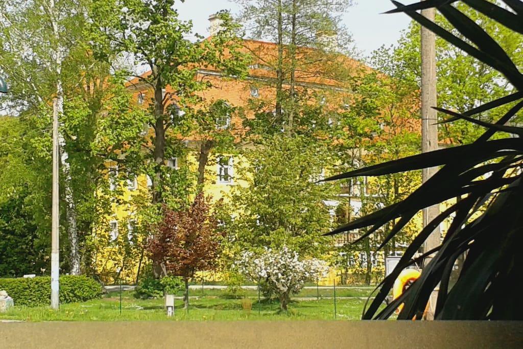 Blick aus dem Fenster auf Schloss Milkel