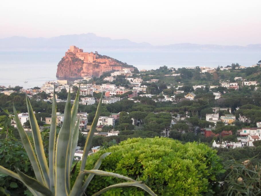 Casa vacanza petit pois houses for rent in ischia for Casa vacanza ischia