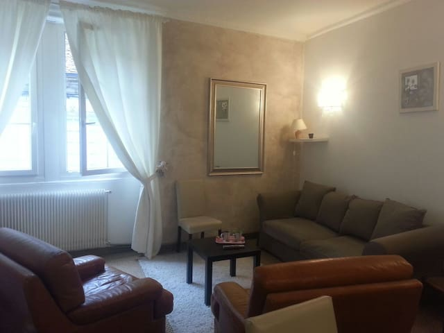 Ideally located flat - Besançon - Apartment